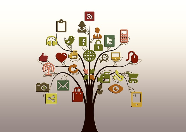 tree of multimedia