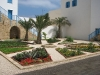 garden recreated at House of Abdu'llah Parsha